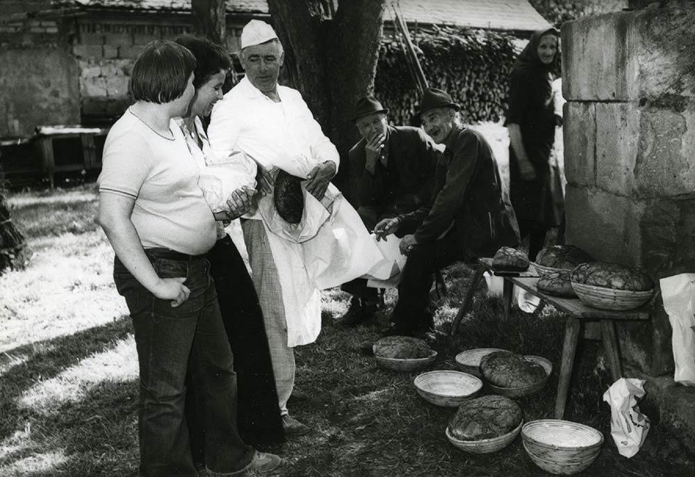 tradition-herzog